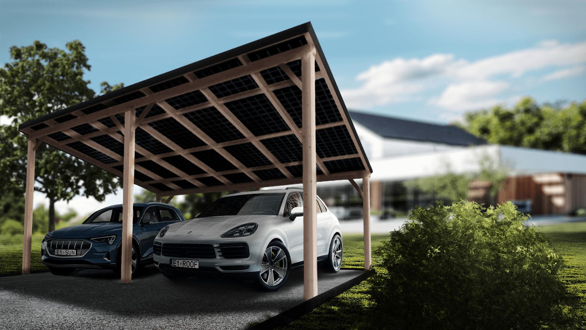 Dwustanowiskowy carport - zdjęcie